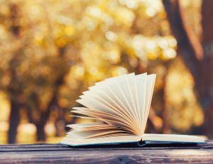 Vendredi lecture : partagez vos coups de cœur grâce au bookcrossing / iStock.com -Julia_Sudnitskaya
