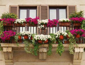Verdir son balcon