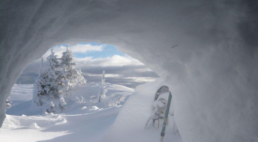 Vue depuis l'intérieur d'un abri de neige