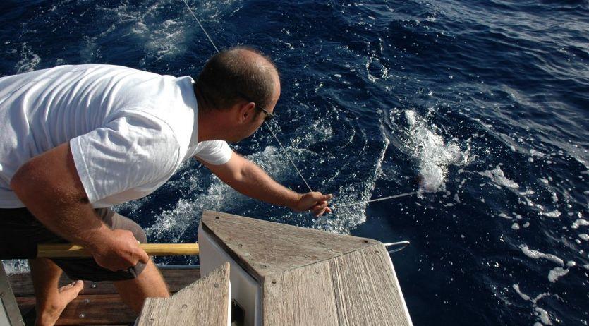 Pêche au gros : matériel de qualité très résistant