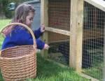 Fabriquer une cage pour son lapin