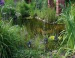 Mare de jardin