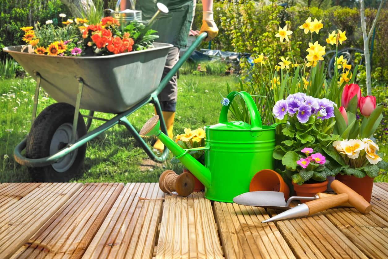 5 id es re ues sur le jardin for Le jardin neufchatel sur aisne