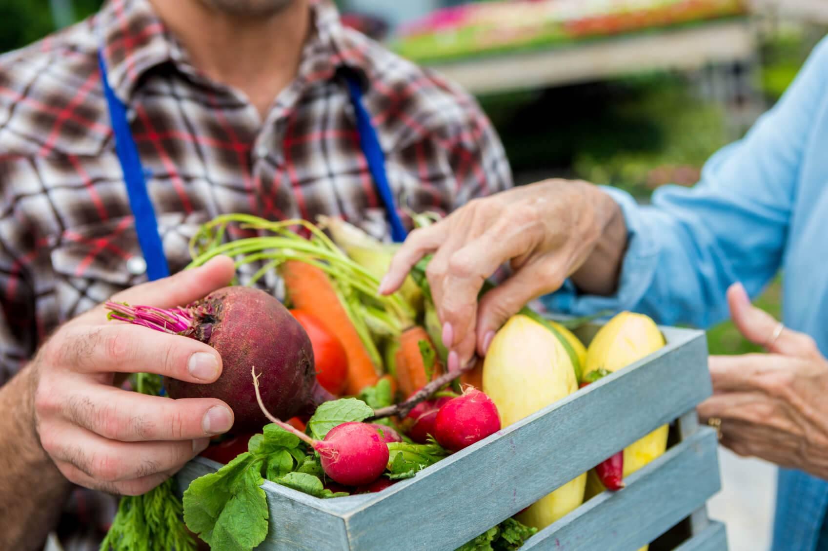 Alimentation tout savoir sur les circuits courts for Tout savoir sur le poussin