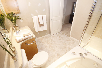 baignoire porte poign es conseils pour am nager la salle de bains des personnes g es. Black Bedroom Furniture Sets. Home Design Ideas