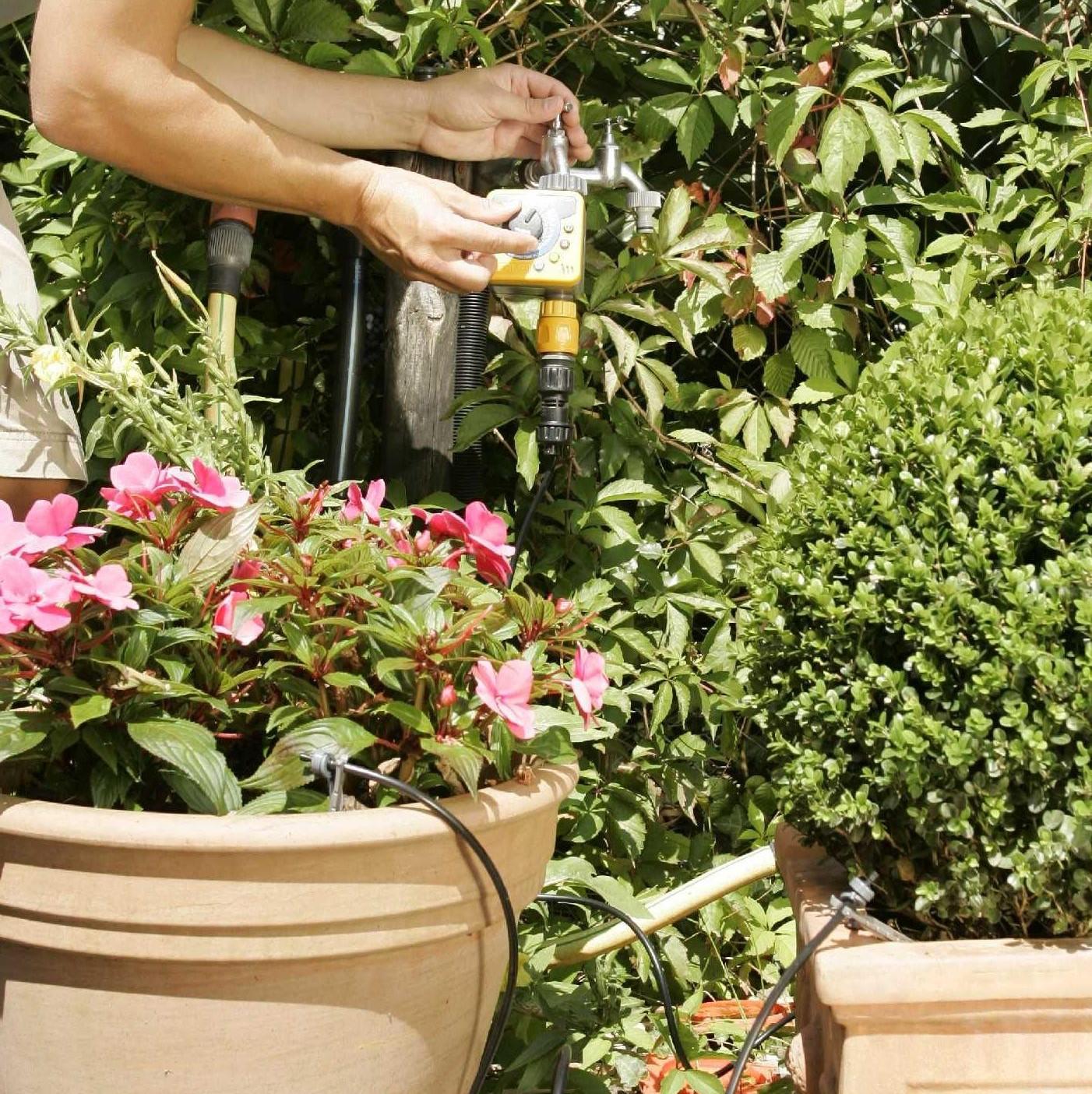 arrosage automatique arrosage goutte goutte arroser son jardin sans gaspiller. Black Bedroom Furniture Sets. Home Design Ideas