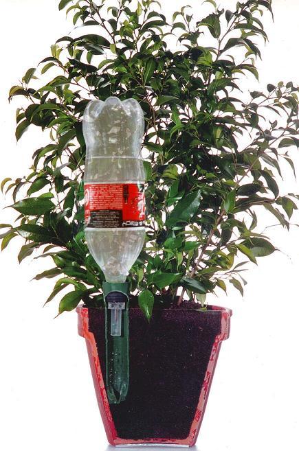 Arrosage pendant les vacances quel syst me choisir pour arroser vos plantes en votre absence - Arrosage goutte a goutte fait maison ...
