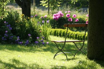 check list entretenir son jardin tout au long de l 39 ann e. Black Bedroom Furniture Sets. Home Design Ideas