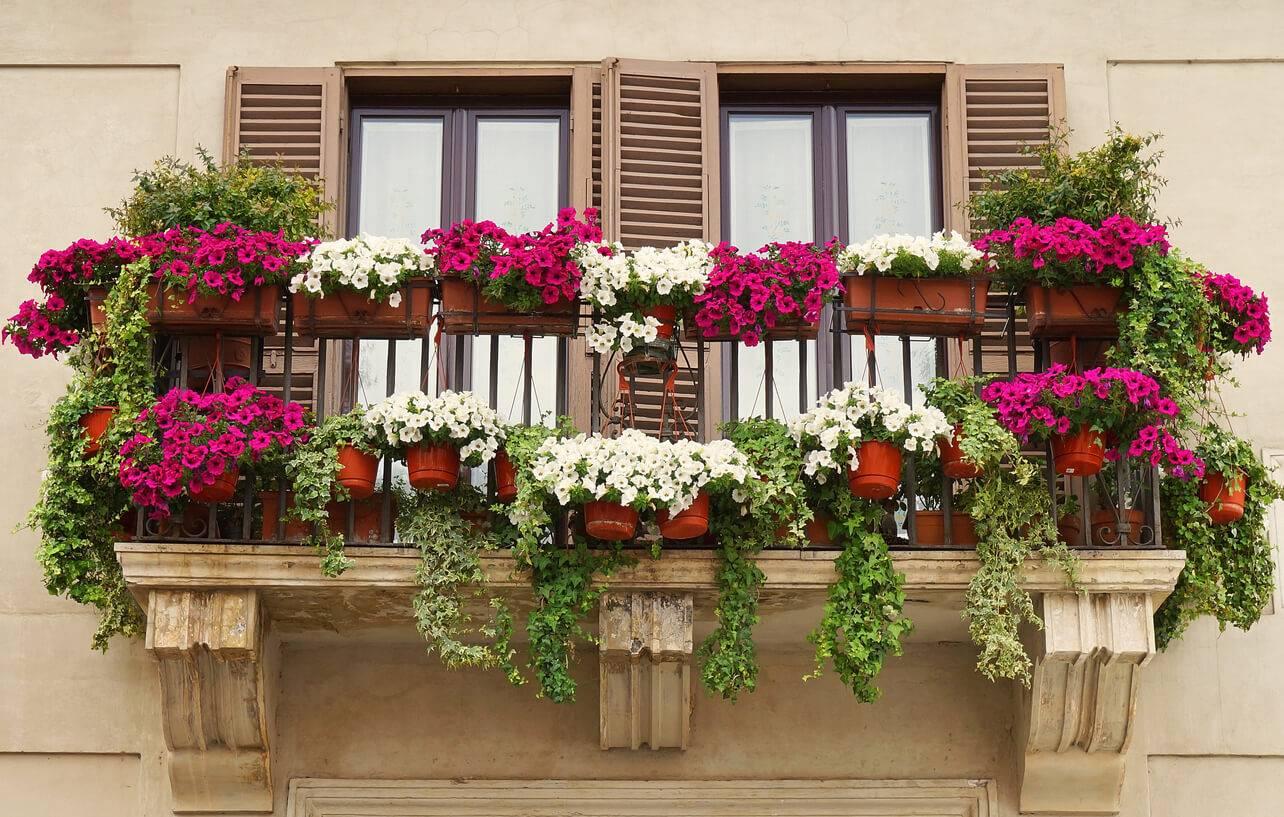 comment faire de votre balcon un espace vert