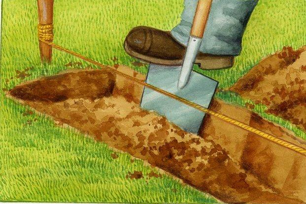 Bordures d coratives - Comment planter du gazon ...