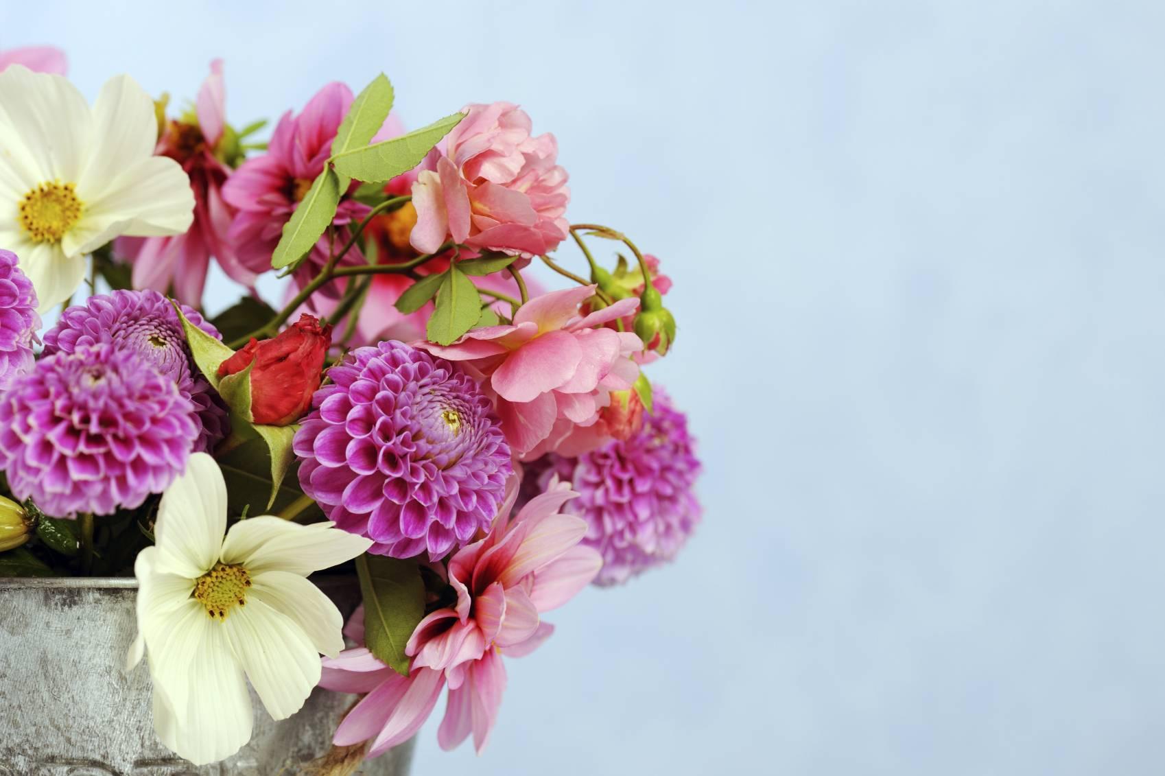 planter des fleurs au printemps pour des bouquets toute l 39 ann e. Black Bedroom Furniture Sets. Home Design Ideas