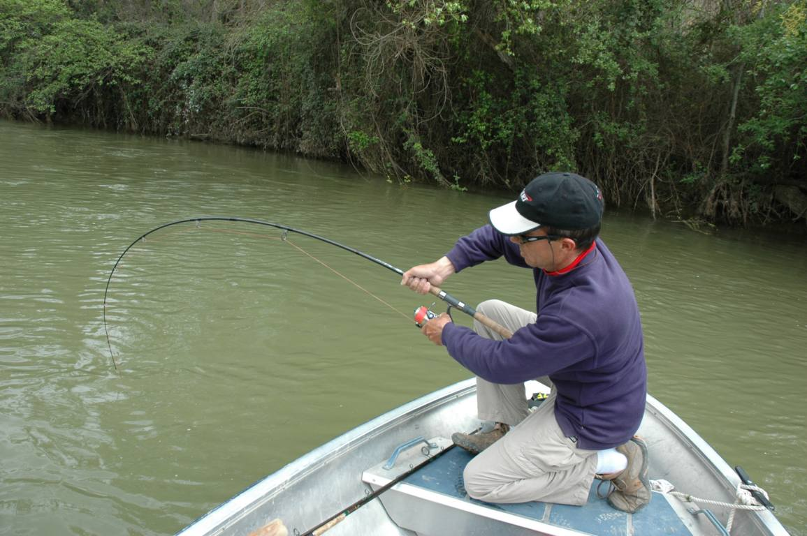 Les lacs à altae la pêche