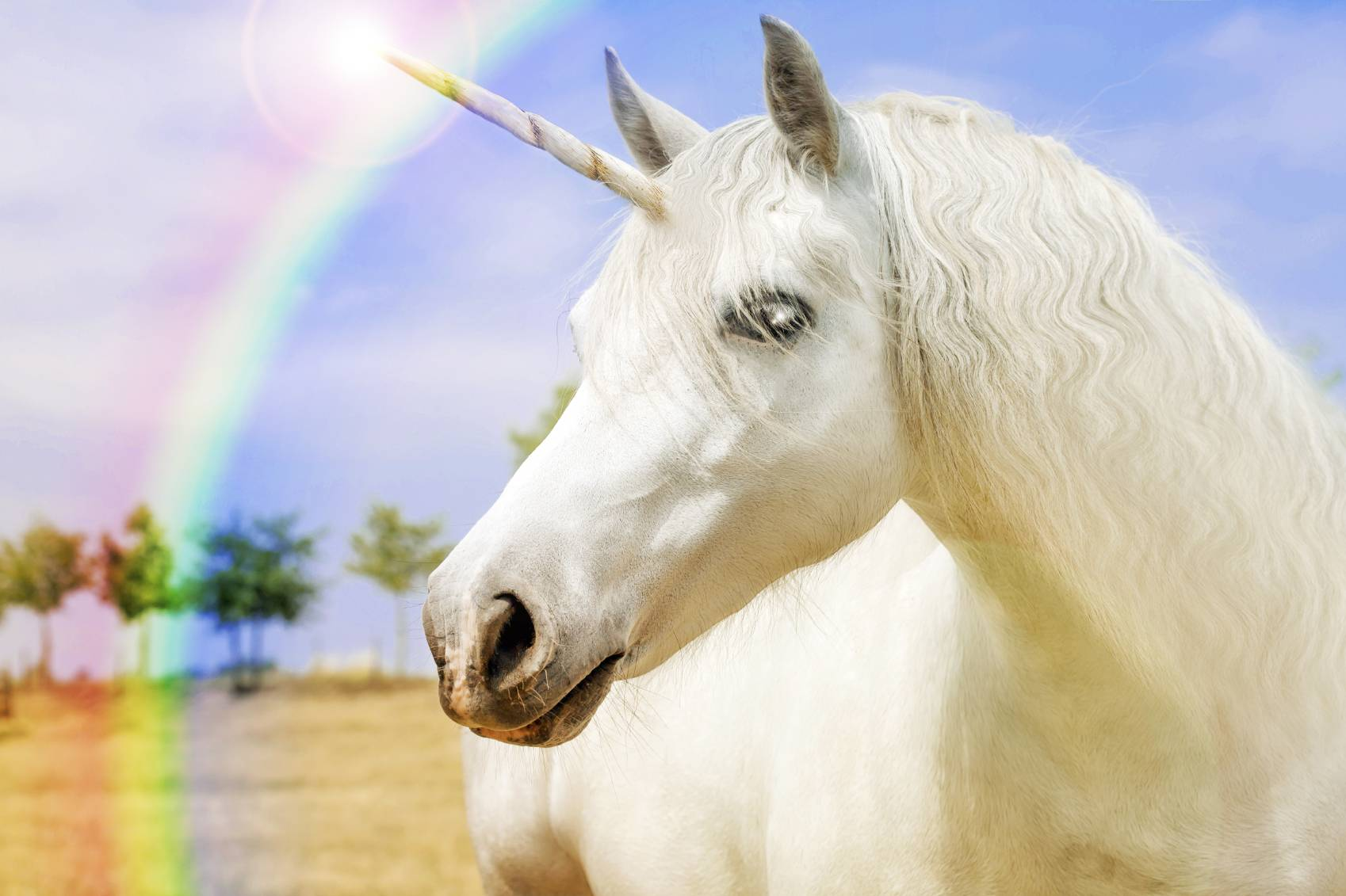 Licorne est plus mythe - Image de licorne ...