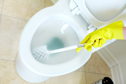 d sinfecter ses toilettes sans utiliser d eau de javel. Black Bedroom Furniture Sets. Home Design Ideas
