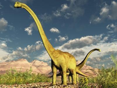 reconstitution dun diplodocus