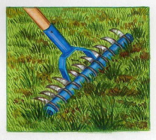 R novation pelouse comment r nover une pelouse for Supprimer la mousse de la pelouse