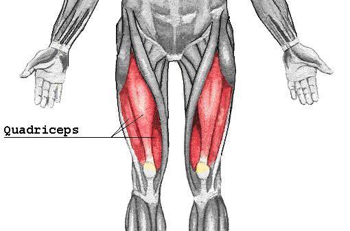 Etirer Ses Quadriceps