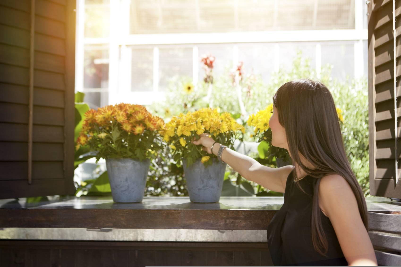 Trucs et astuces pour fleurir un petit appartement for Astuce petit appartement
