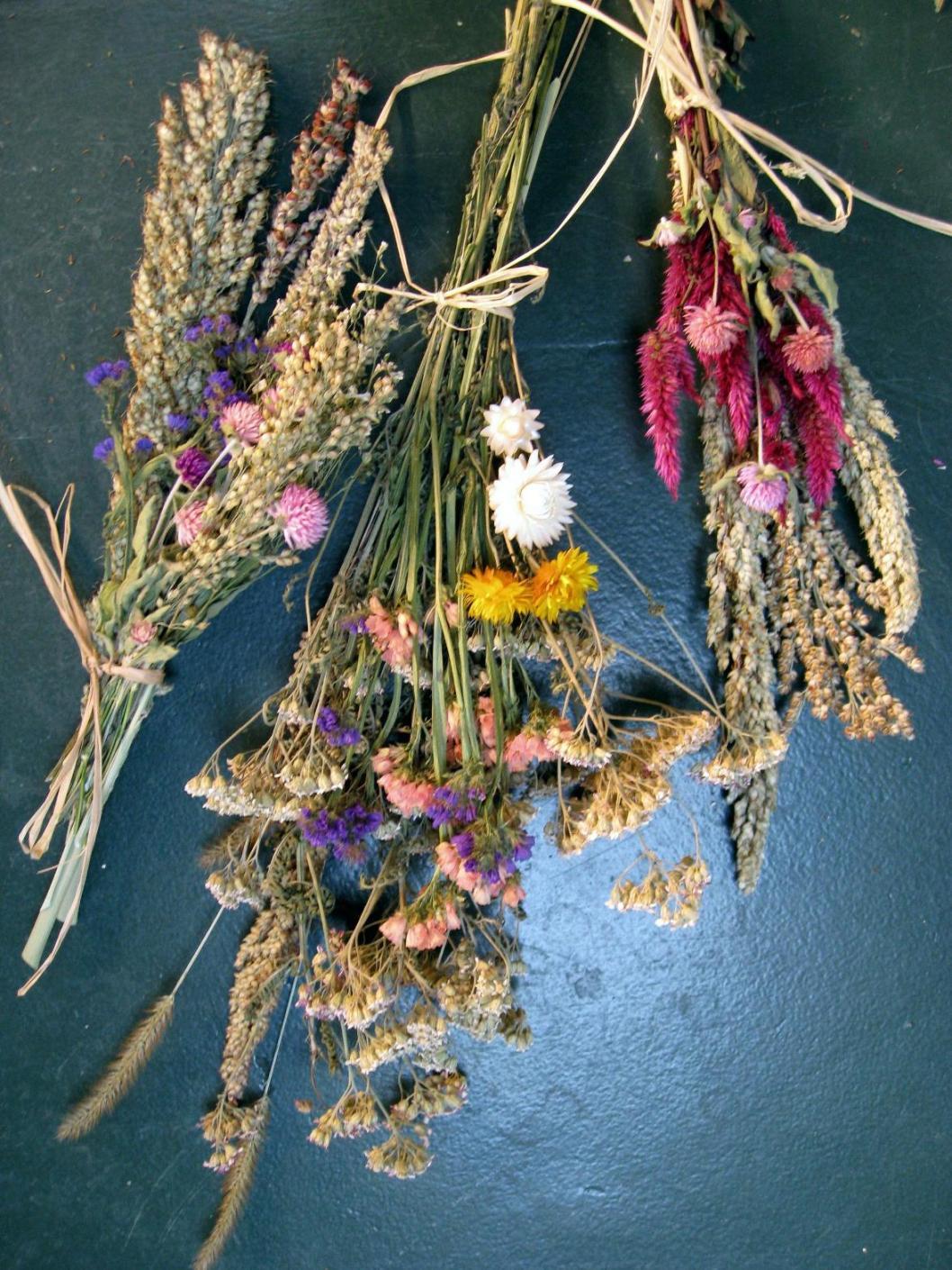 Fleurs Sechees Faire Secher Des Fleurs Pratique Fr
