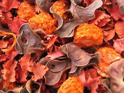 Fleurs s ch es faire s cher des fleurs - Faire un pot pourri ...