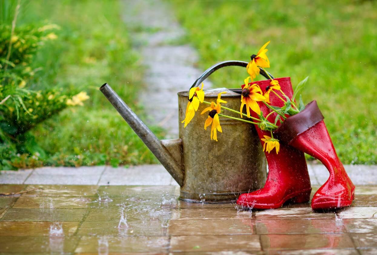 Inondations comment drainer l 39 eau dans son jardin - Comment trouver un tresor dans son jardin ...