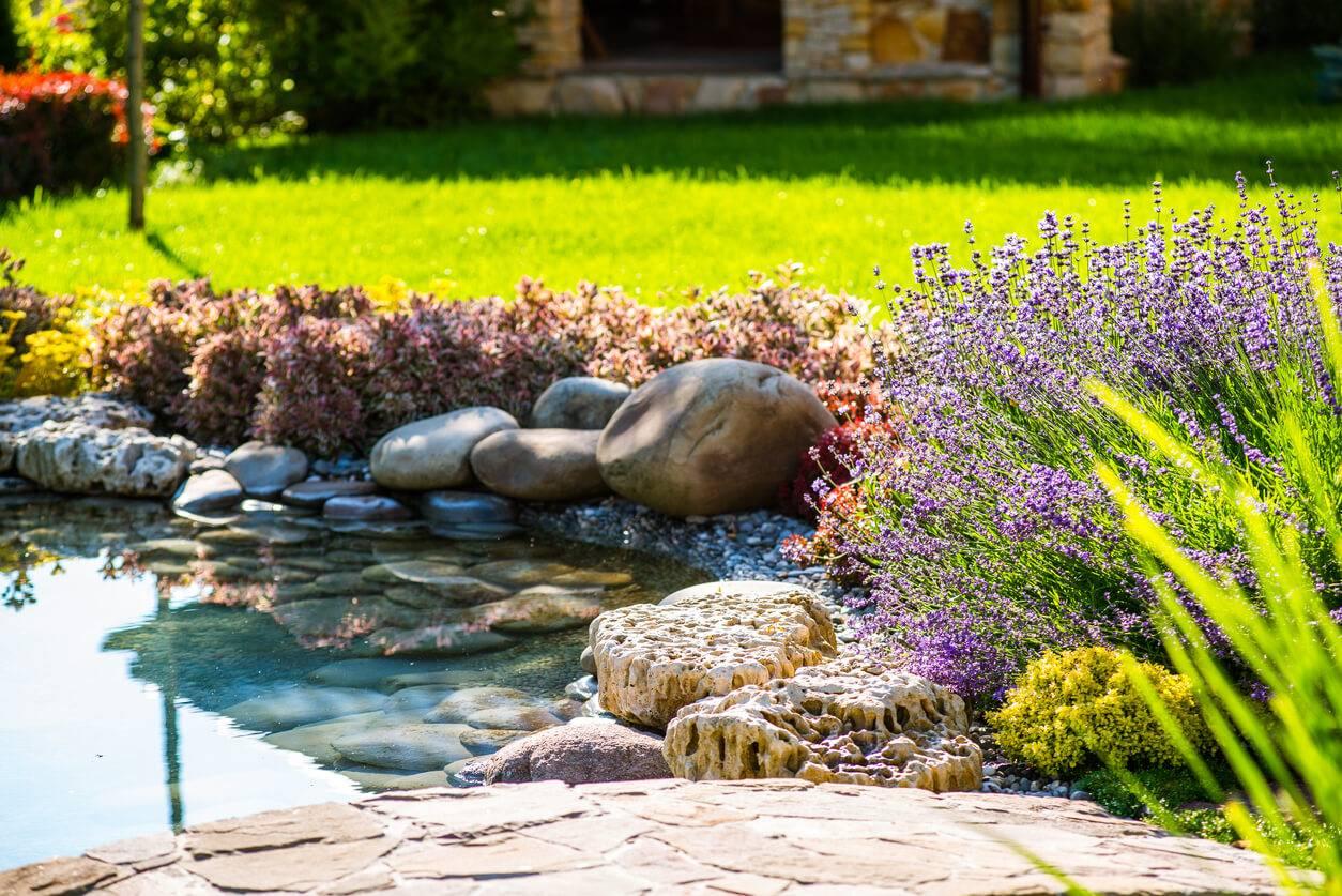 jardin 3 astuces pour cr er une mare chez soi. Black Bedroom Furniture Sets. Home Design Ideas