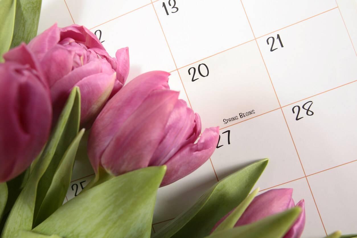 Le calendrier de printemps du jardin for Calendrier entretien jardin