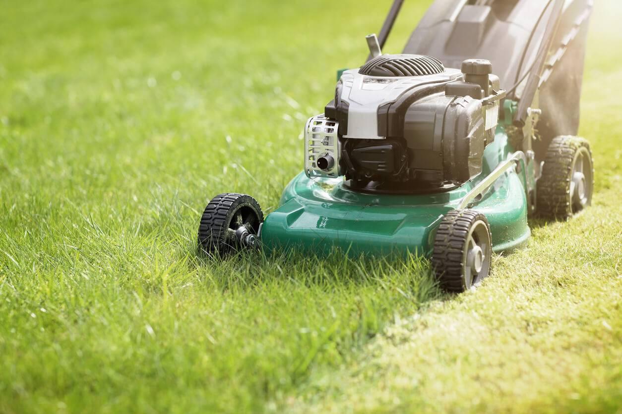Les conseils d entretien saisonnier d 39 une pelouse for Entretien gazon printemps