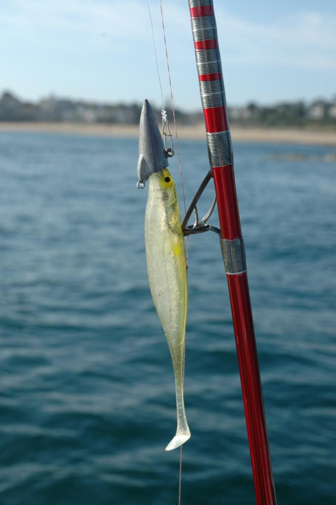 Lancer pezon michel  Cannes à pêche  Comparer les prix sur choozen