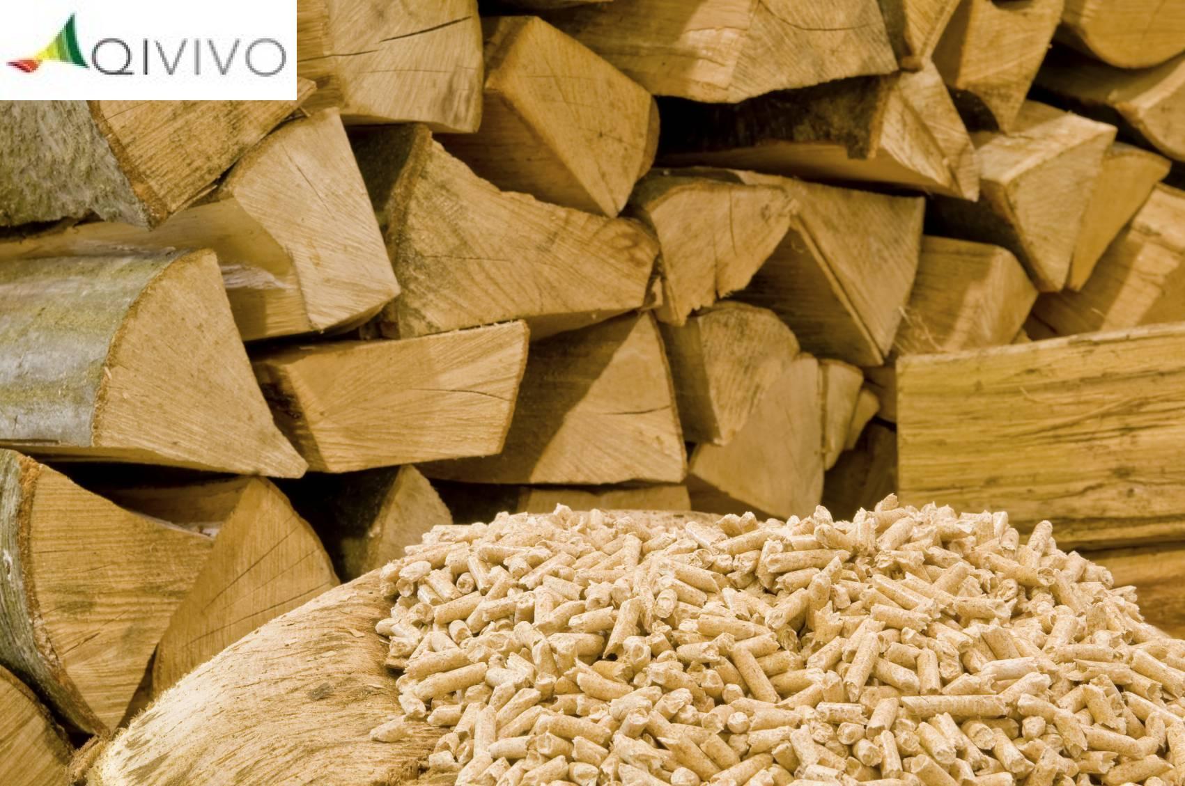 Quel est le prix du chauffage au bois # Quel Est Le Meilleur Bois De Chauffage