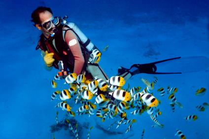 comment devenir moniteur de plongee