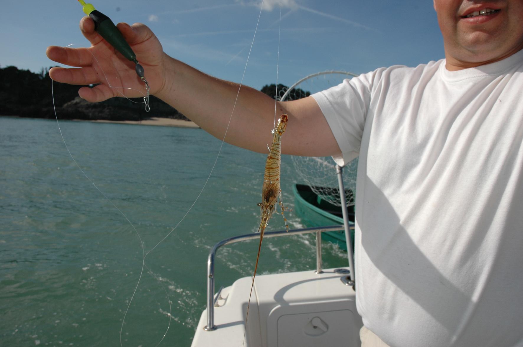 La rivière klyazma la pêche 2016