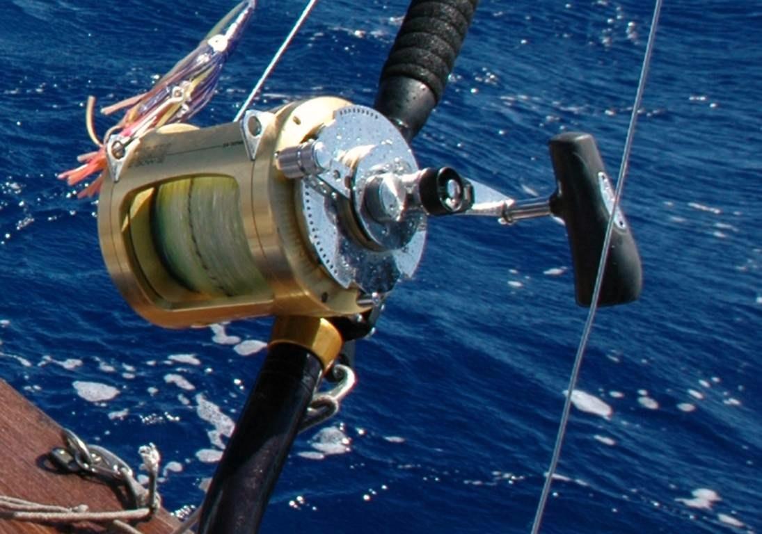choisir son moulinet pour la p u00eache en mer
