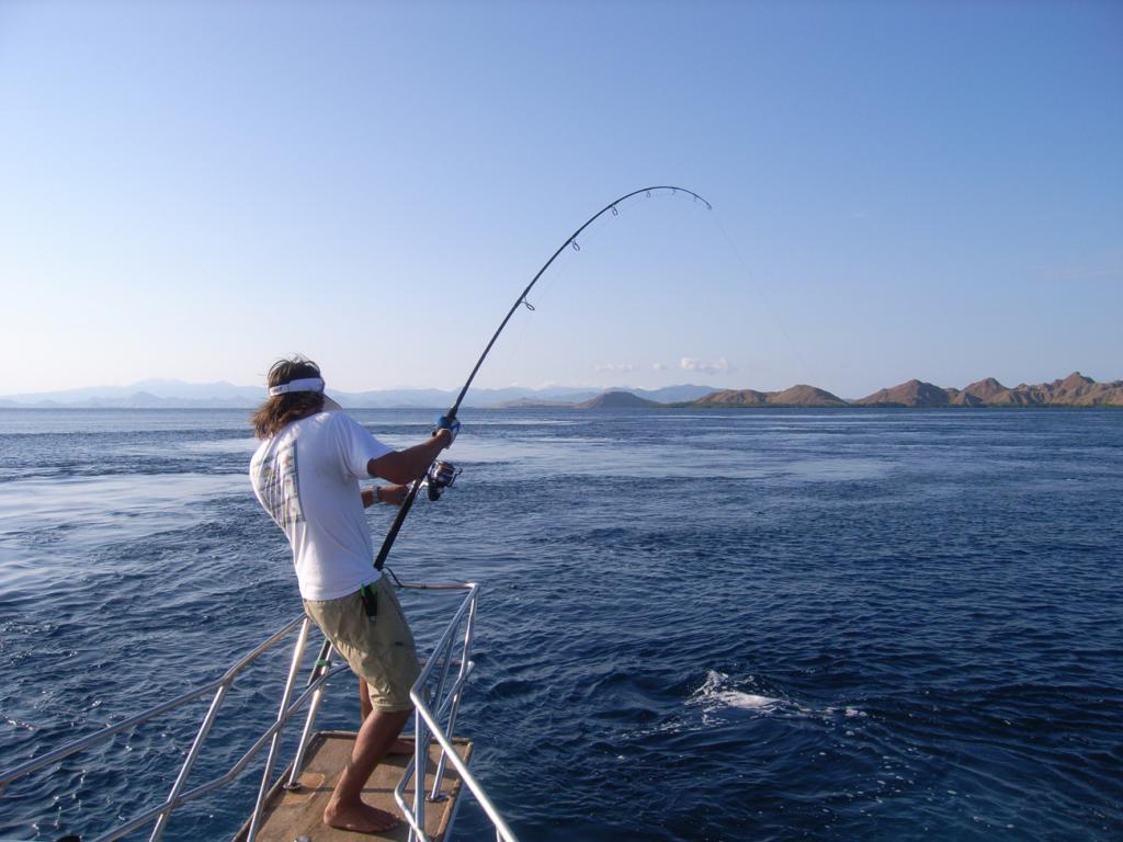 Télécharger les nouveaux jeux la pêche sur le téléphone