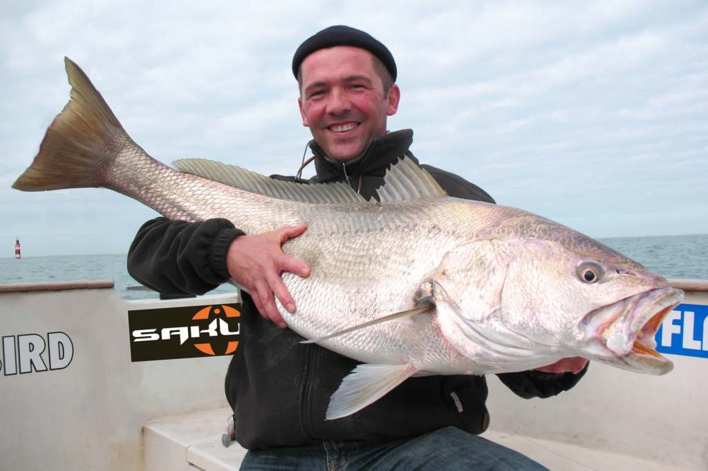 Hook_Bass.overblog  Blog de pêche des carnassiers en No kill.