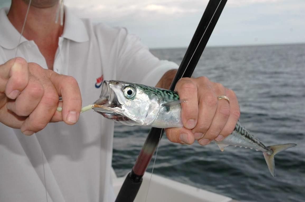 Jury zaslavsky vidéo la pêche
