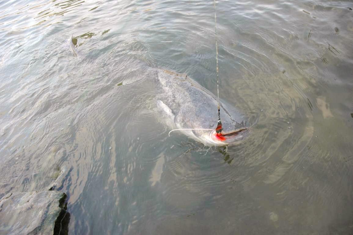 Tambov les marchandises pour la pêche