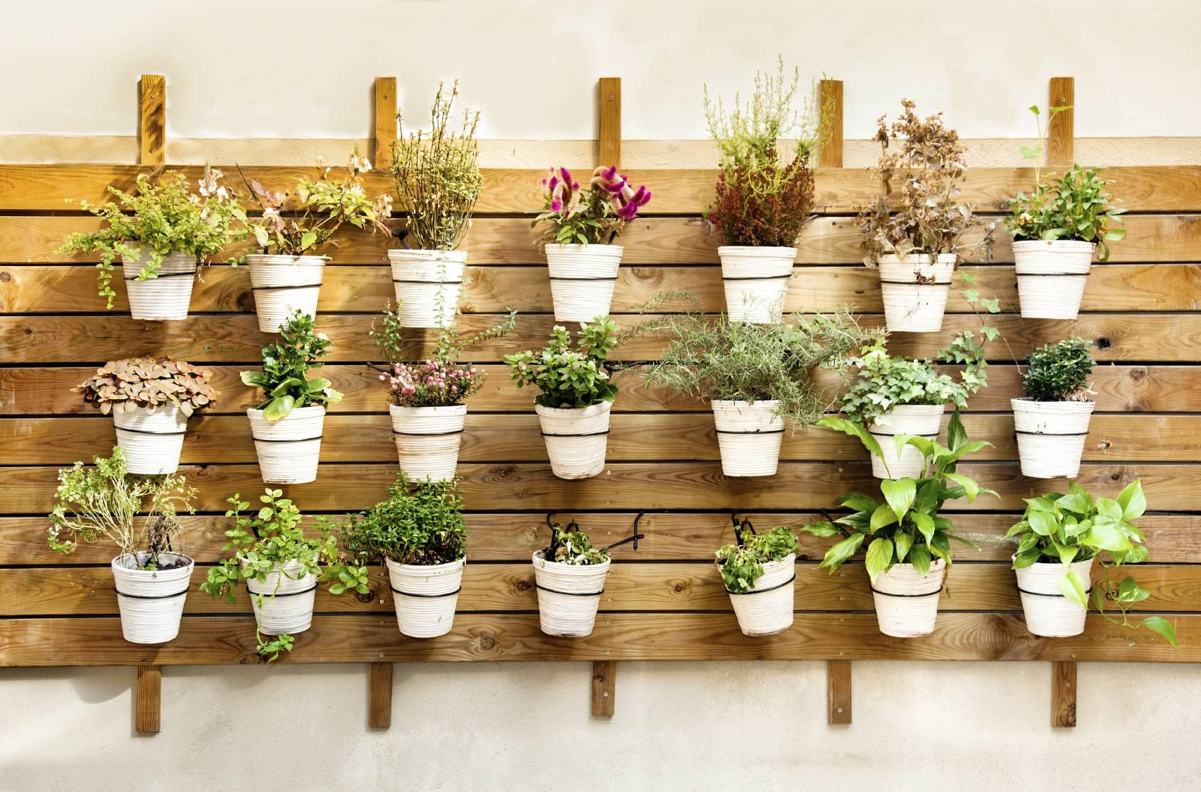 Comment d corer sa terrasse avec des pots de jardin design - Decorer terrasse avec plantes ...