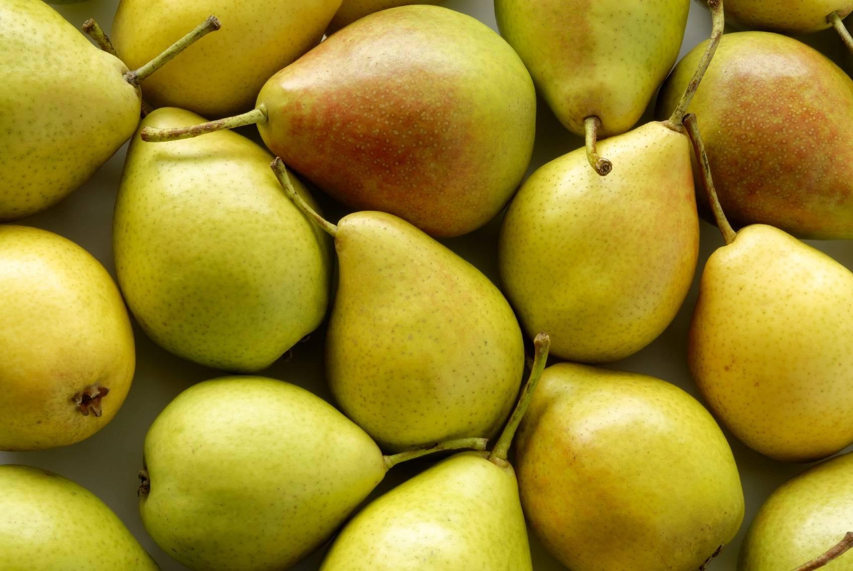 Manger des poires pour viter la gueule de bois for Alcool de poire maison