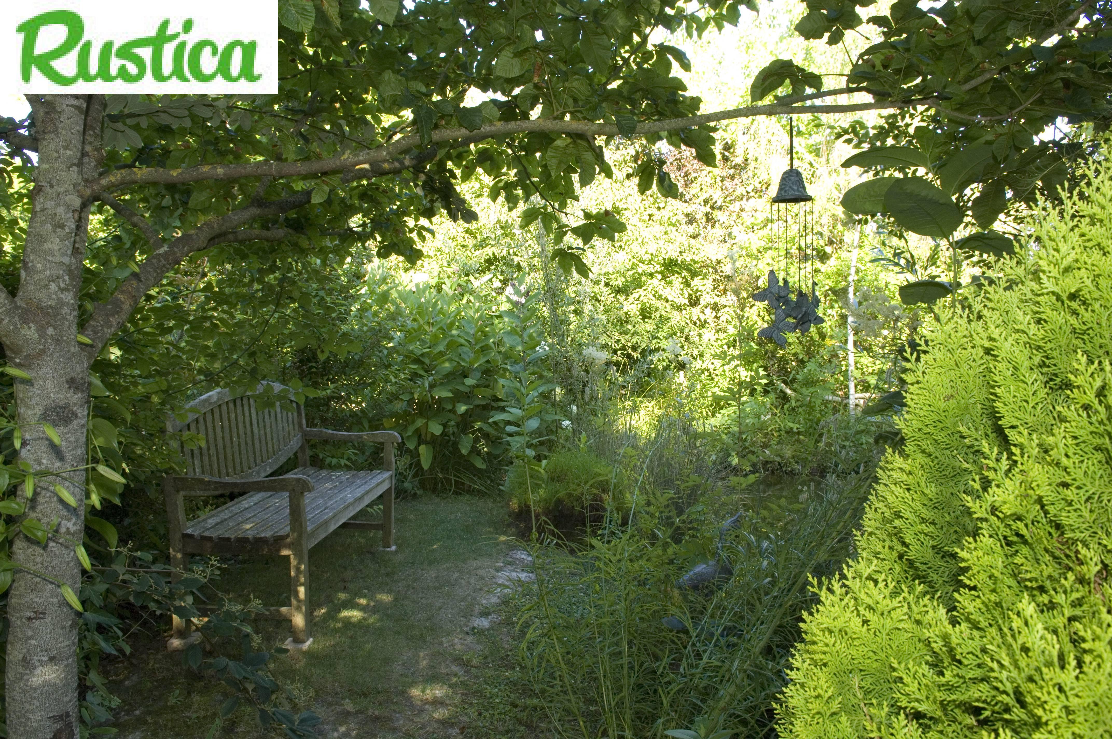 Jardin l 39 ombre que faire for Amenagement jardin ombre
