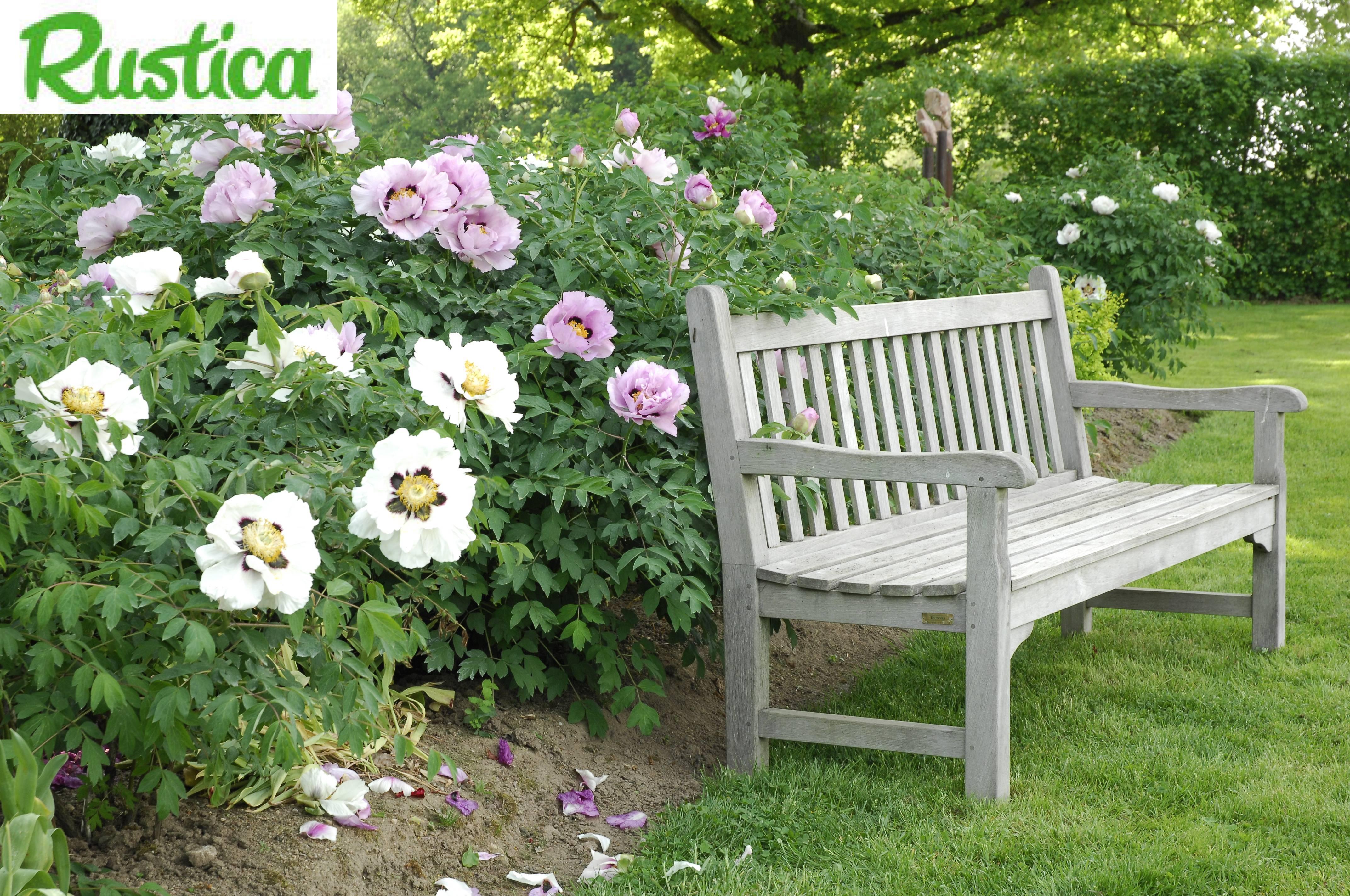 Choisir son mobilier de jardin for Marre de jardin