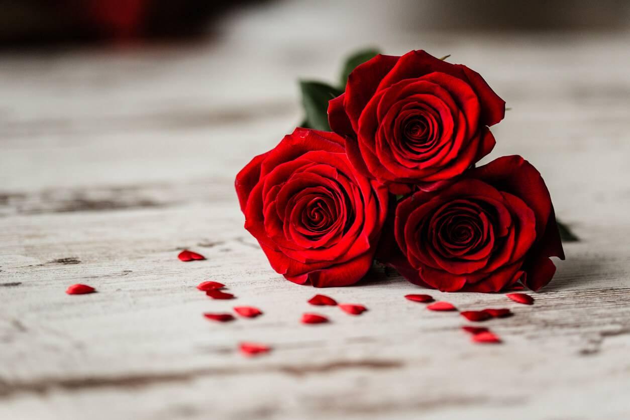 9c750ceb390 Saint-Valentin   décryptez le langage des fleurs
