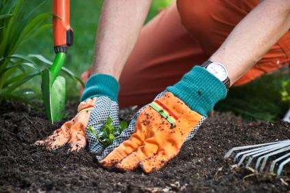 Charmant Compost Dans Le Jardin #5: Se-mettre-jardinage.jpg