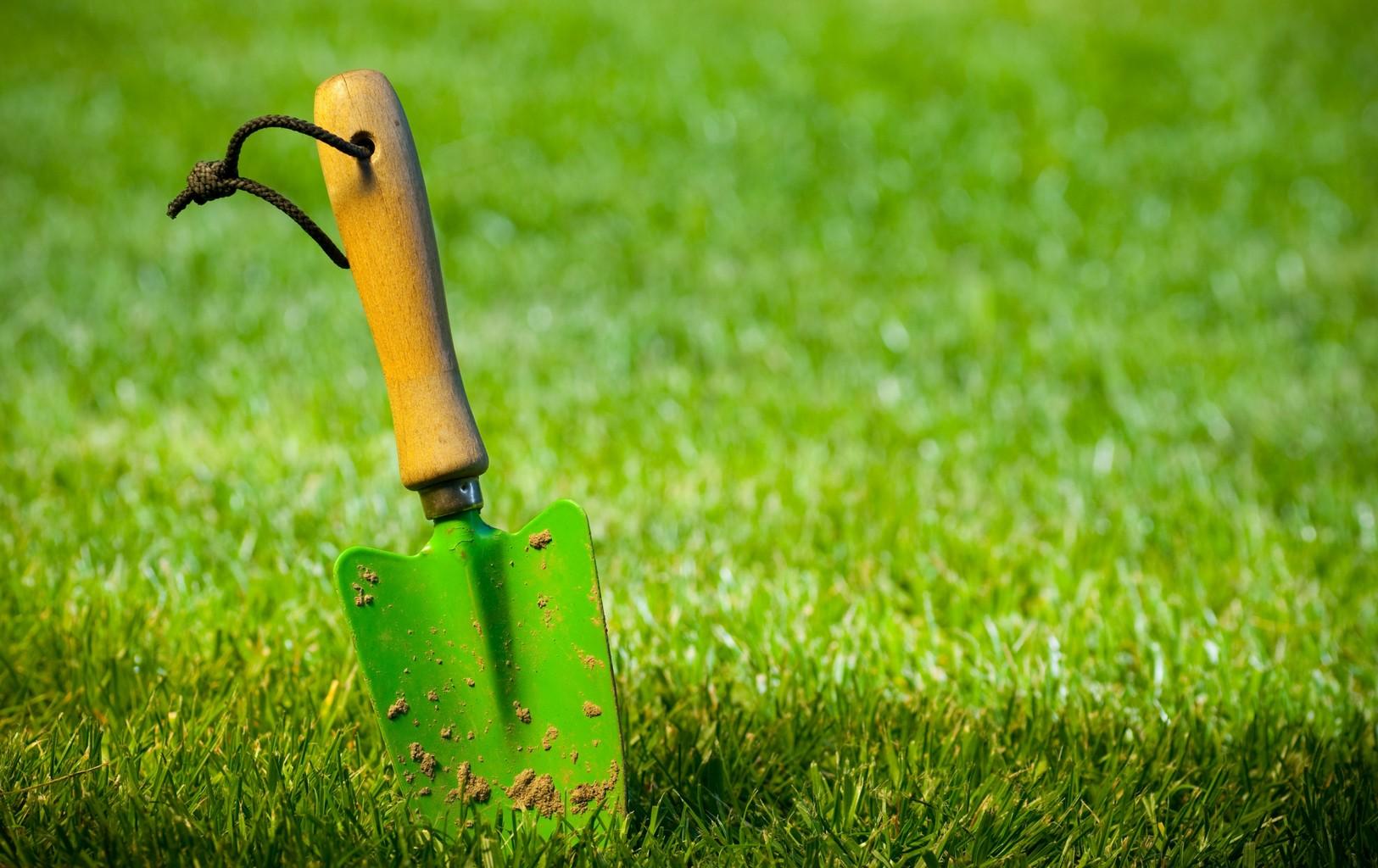 Semer du gazon for Heure de jardinage