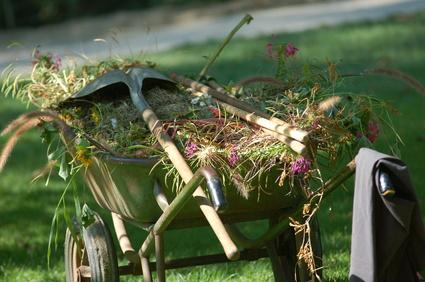 jardinage en mars semer fleurs fruits et l gumes en mars. Black Bedroom Furniture Sets. Home Design Ideas