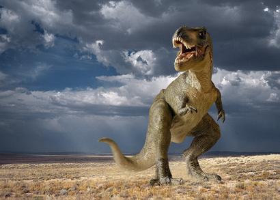 Tyrannosaures Et Autres Dinosaures Th 233 Ropodes Pratique Fr