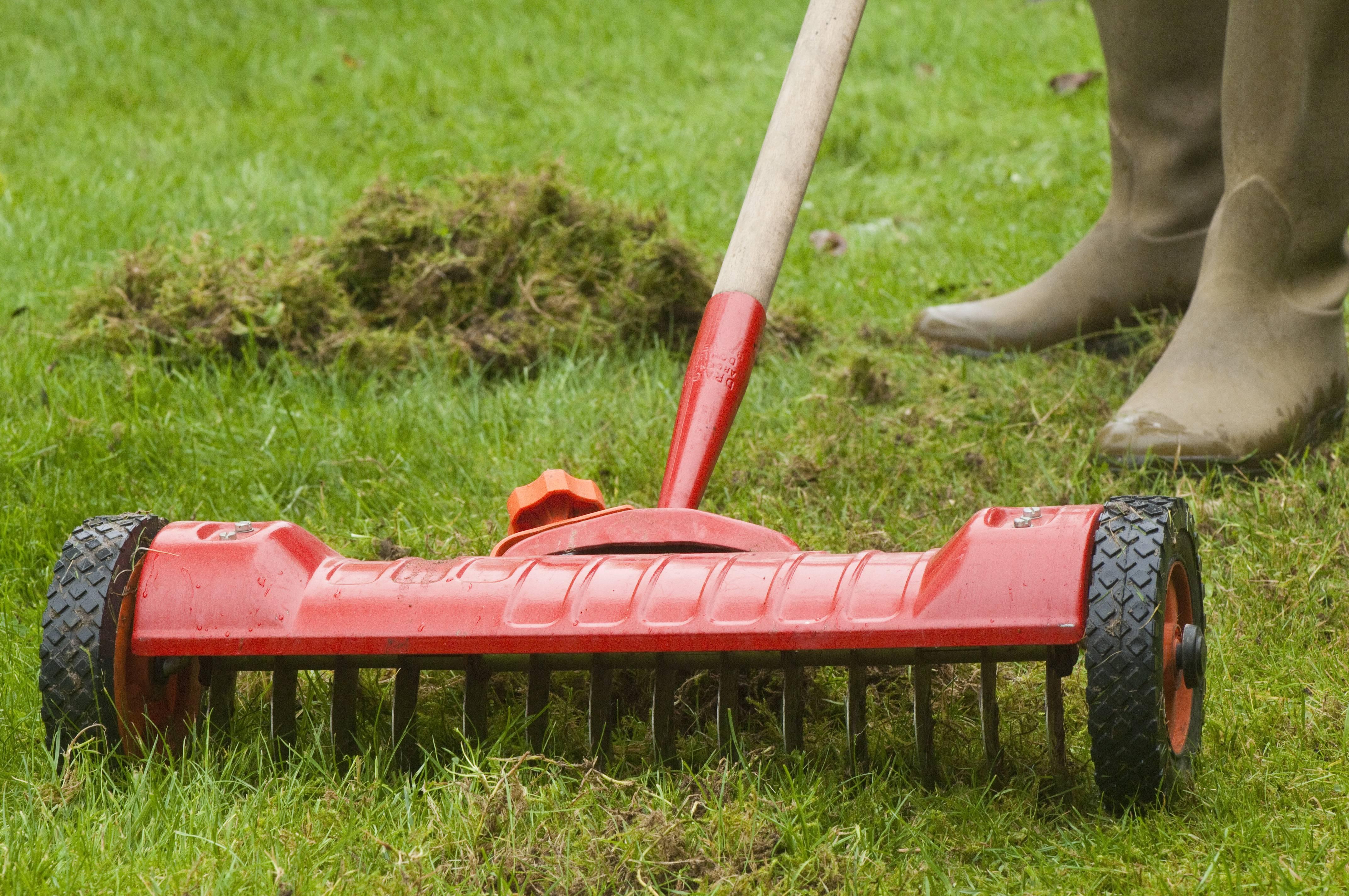 Bien choisir un scarificateur - Scarificateur pour pelouse ...